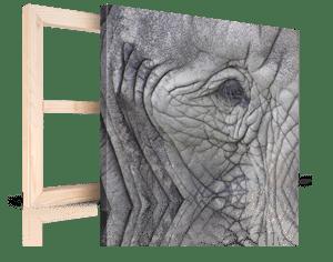 Foto op canvas met Kerst 4_Voorbeeld met olifant