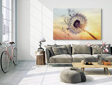 Woonruimte met foto op plexiglas met paardenbloem